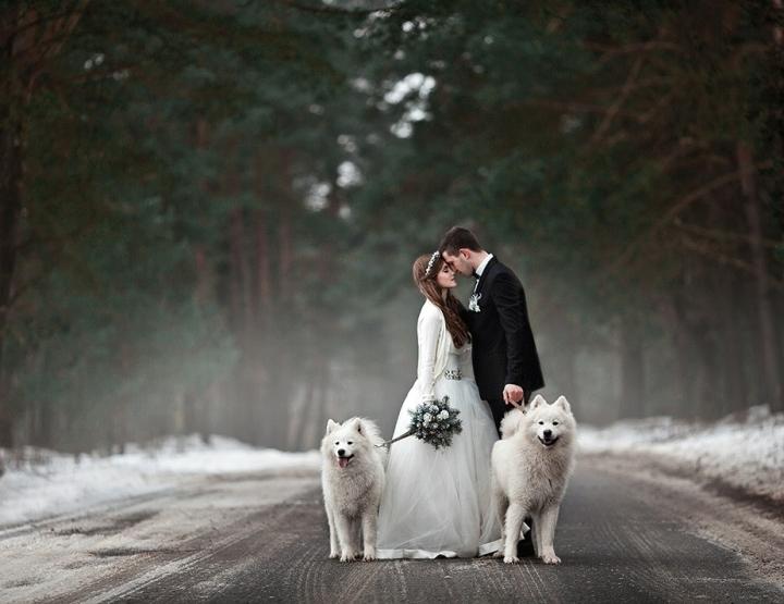Wie heeft de mooiste bruiloft?