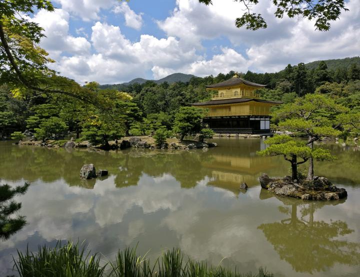 Op huwelijksreis naar Japan: bijzonder divers!