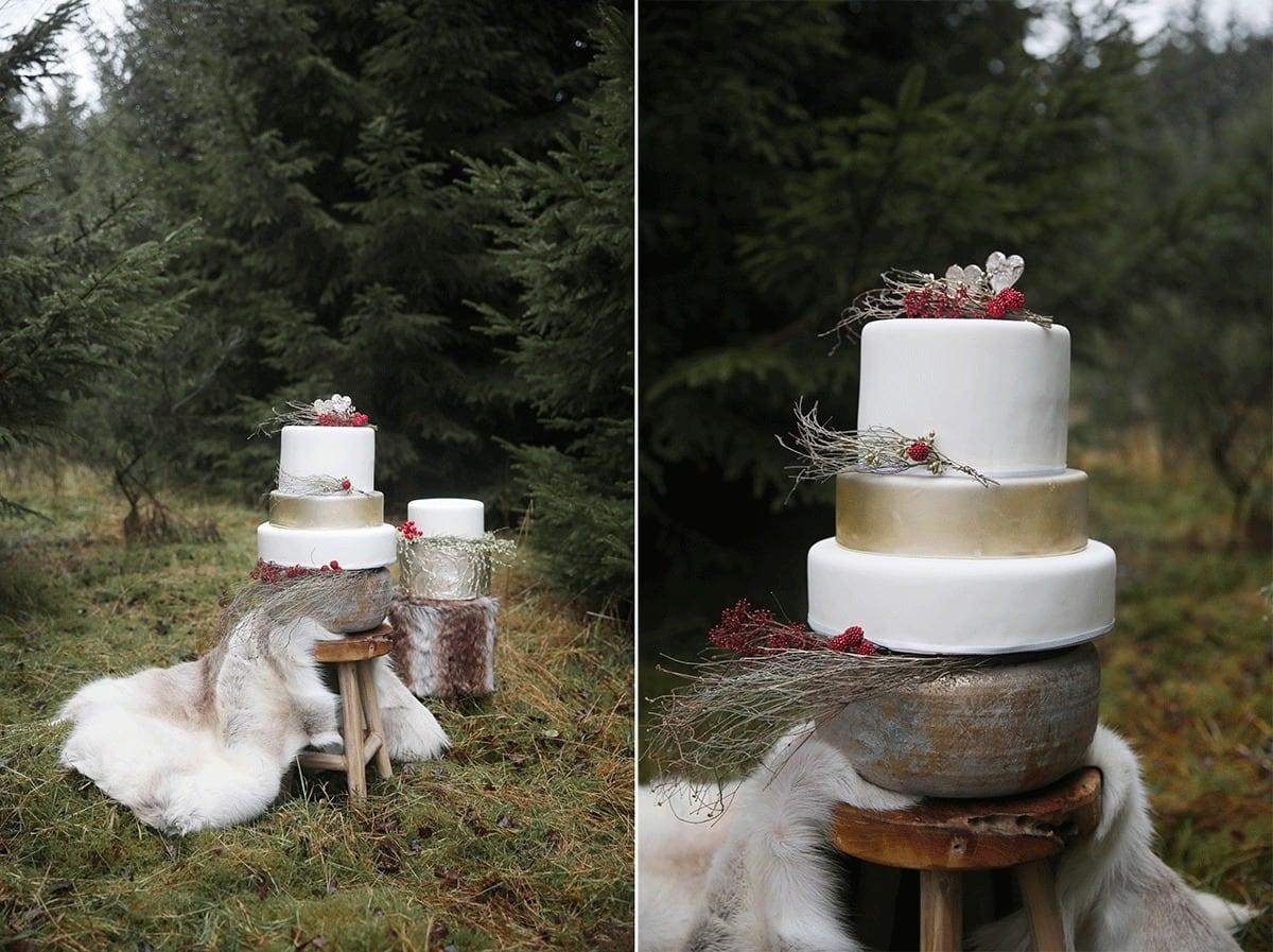 winterse-bruiloft-met-roofvogel-6