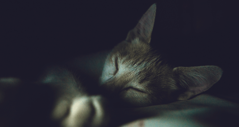 Goed slapen is belangrijk! Tips voor de bruid om zich mooi te slapen