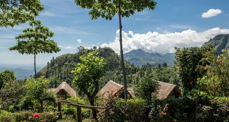 Tips voor een bijzondere huwelijksreis naar Sri Lanka