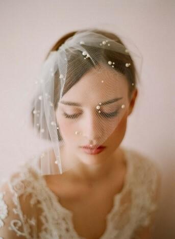 birdcage veil crystal lace