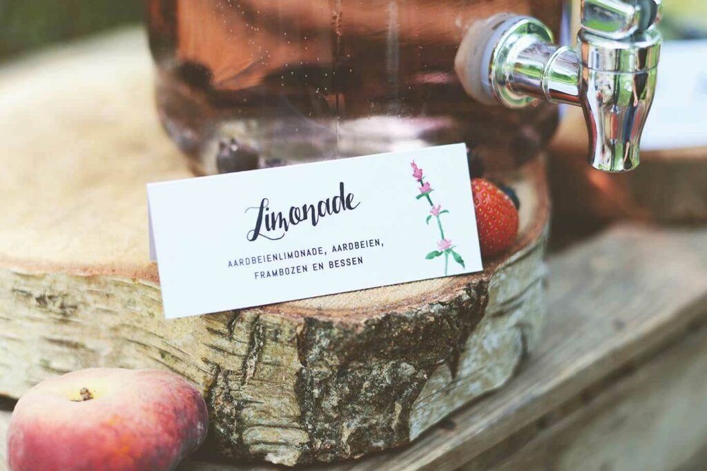 picknick-zomerbruiloft-(17)